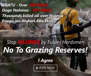 Stop Fulani Herdsmen! Build Ranches in Their State